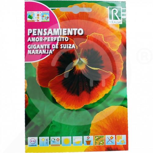 eu rocalba seed pansy amor perfeito gigante de suiza naranja 0 5 - 0