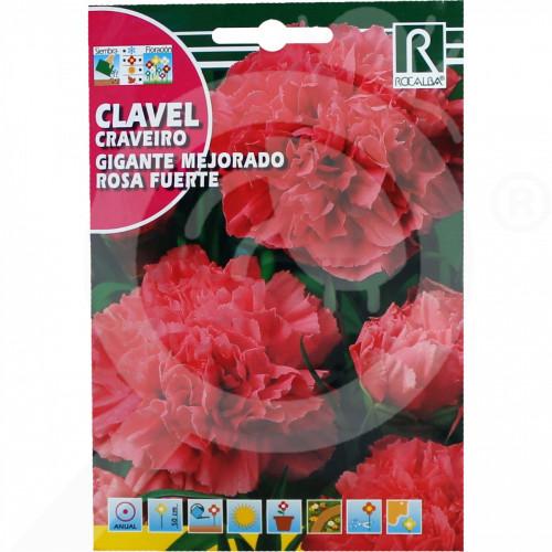 eu rocalba seed carnations gigante mejorado rosa fuerte 1 g - 0