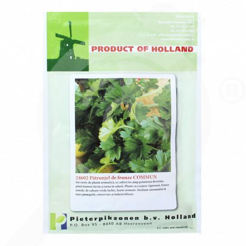 eu pieterpikzonen seed commun parsley 50 g - 1