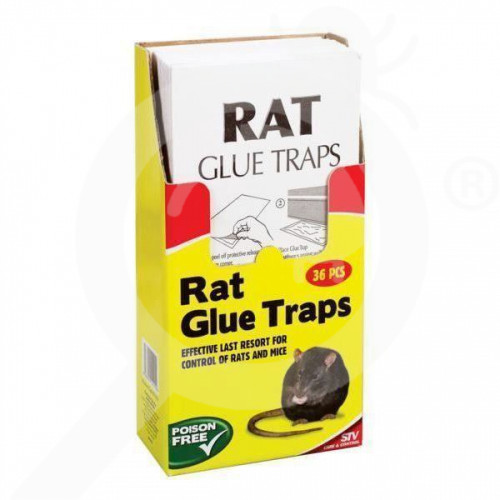 stv trap big cheese 191 rat adhesive - 1