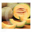eu pop vriend seed melon ananas 250 g - 1