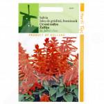 fr pieterpikzonen seeds salvia st johns fire 0 5 g - 1, small