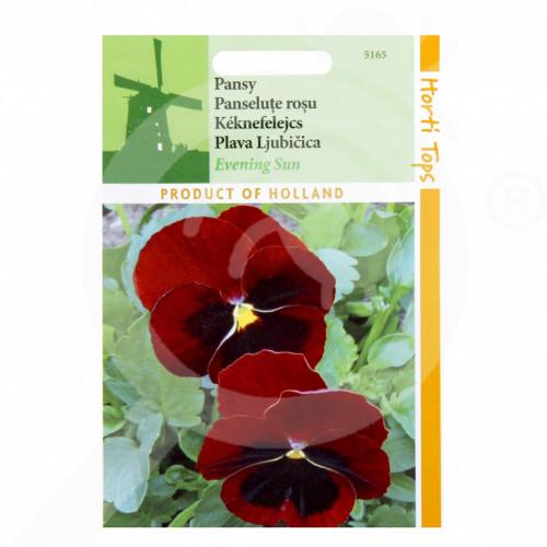 fr pieterpikzonen seeds viola swiss giant evening sun 0 25 g - 1, small