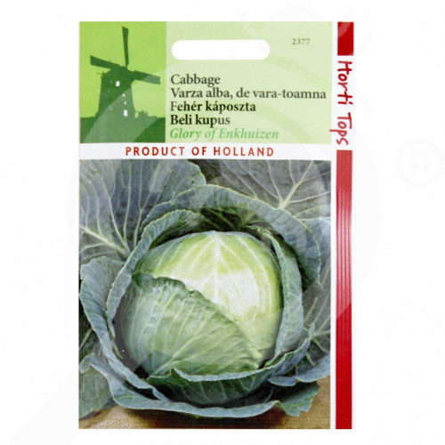 fr pieterpikzonen seeds glory of enkhuizen 1 g - 1, small