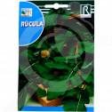hu rocalba seed arugula 6 g - 0, small