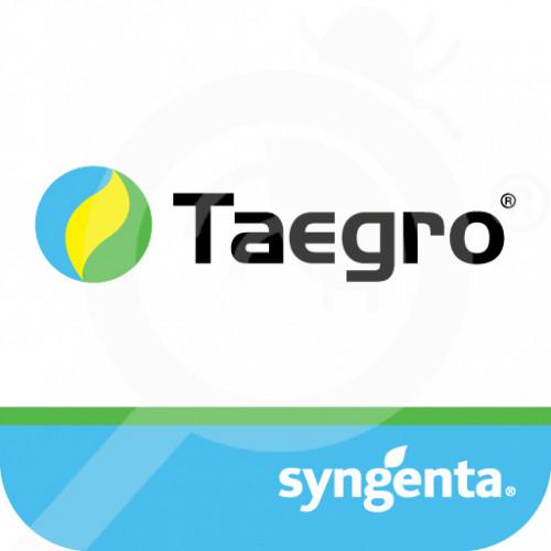 hu syngenta fungicide taegro 4 g - 0, small