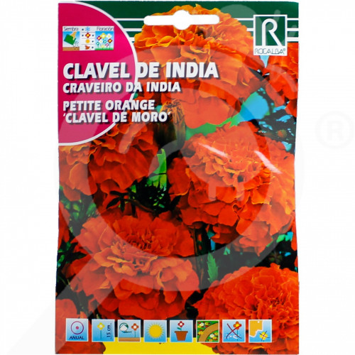 hu rocalba seed petite orange clavel de moro 4 g - 0, small