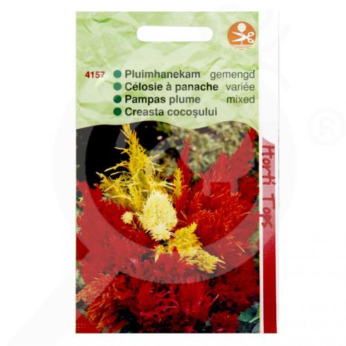 hu pieterpikzonen seed celosia plumosa 0 5 g - 1, small