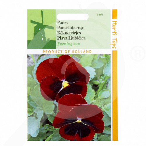 hu pieterpikzonen seed viola swiss giant evening sun 0 25 g - 1, small