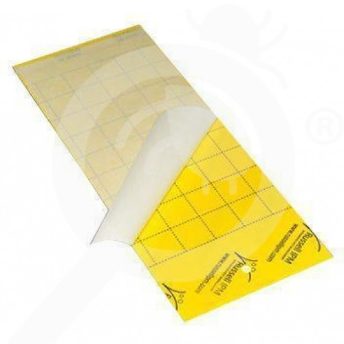 us russell ipm trap impact yellow sticky board set of 5 - 1, small