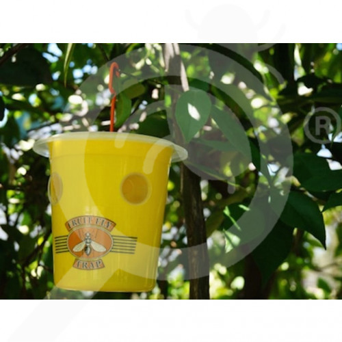 au bugs for bugs trap fruit fly trap pro yellow - 2, small