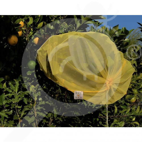 au bugs for bugs special unit beetle bags large - 1, small