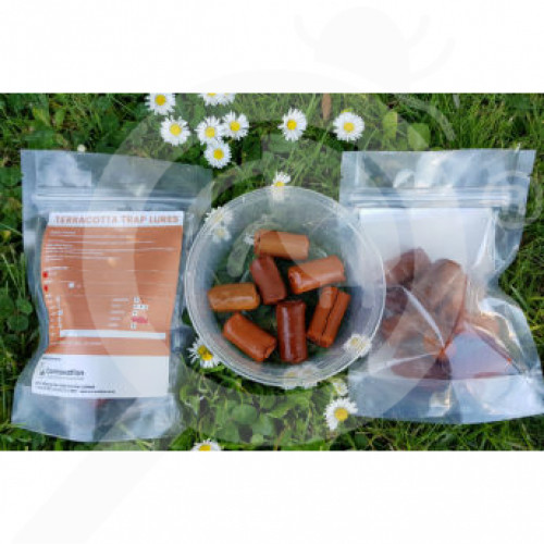 nz connovation attractant terracotta trap lures meat set of 50 - 1, small
