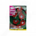 pl rocalba seed scarlet o hara trepadora 6 g - 0, small