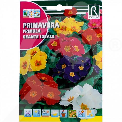 pl rocalba seed primula geante ideale 0 2 g - 0, small