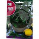 uk rocalba seed mint 0 5 g - 0, small