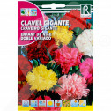 uk rocalba seed carnations enfant de nice doble variado 1 g - 0, small
