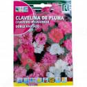 uk rocalba seed carnations doble variado 1 g - 0, small