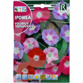 uk rocalba seed volubilis trepadora 10 g - 0, small