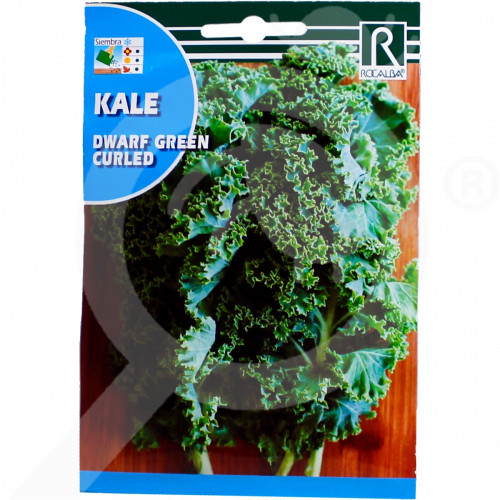 uk rocalba seed green dwarf kale curled 6 g - 0, small