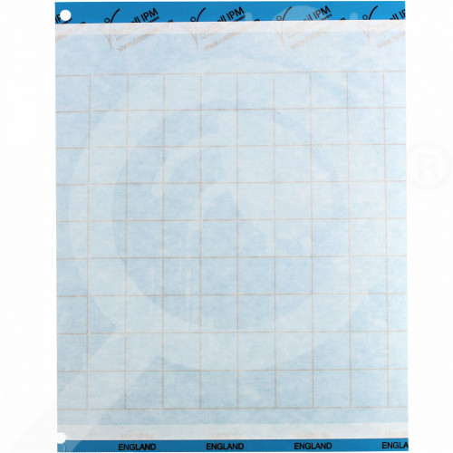 uk russell ipm adhesive trap impact blue 20 x 25 cm - 1, small