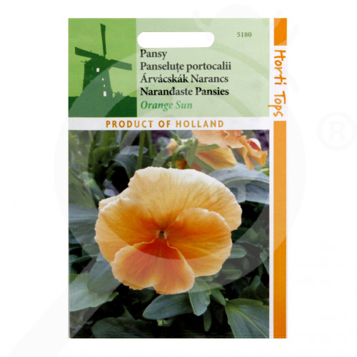 uk pieterpikzonen seed viola swiss giant orange sun 0 15 g - 0, small