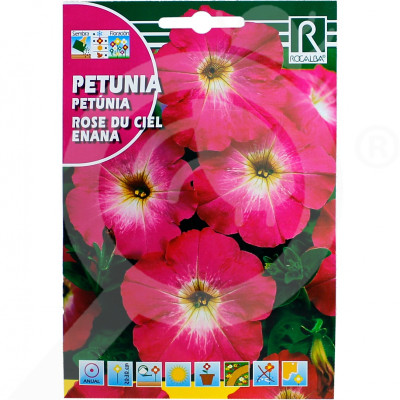 sl rocalba seed petunia rose du ciel enana 0 5 g - 0