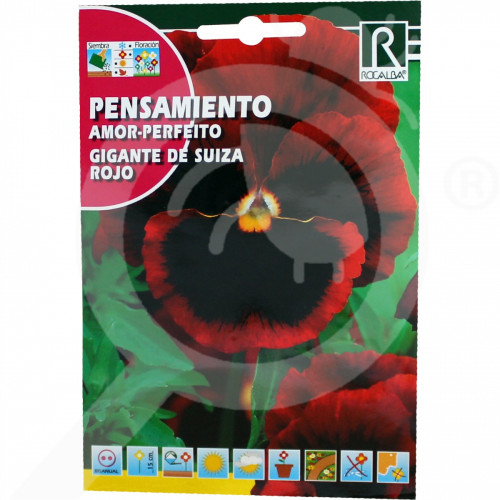 sl rocalba seed pansy amor perfeito gigante de suiza roja 0 5 g - 0, small