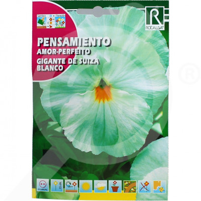 ro rocalba seed pansy amor perfeito gigante de suiza blanco 0 5  - 0