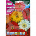 ro rocalba seed gerbera rayon de soleil hibrida 0 1 g - 2, small