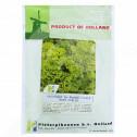 ro pieterpikzonen seminte moss curled 50 g - 1, small