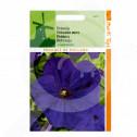 ro pieterpikzonen seminte petunia nana compacta mov 0 2 g - 1, small