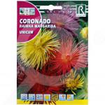 ro rocalba seed daisies unicum 4 g - 1, small