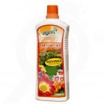 ro agro cs ingrasamant crizanteme lichid 1 l - 1, small