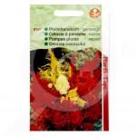 ro pieterpikzonen seminte celosia plumosa 0 5 g - 1, small