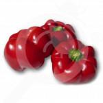 ro pieterpikzonen seminte cornel 500 g - 1, small