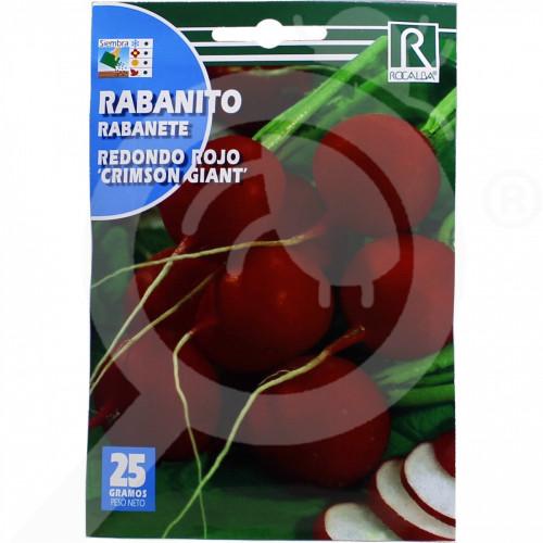 ro rocalba seed radish rojo crimson giant 25 g - 3, small