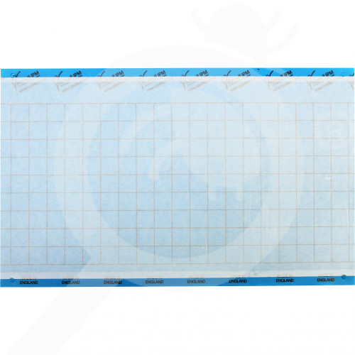 ro russell ipm adhesive trap impact blue 40 x 25 cm - 1, small