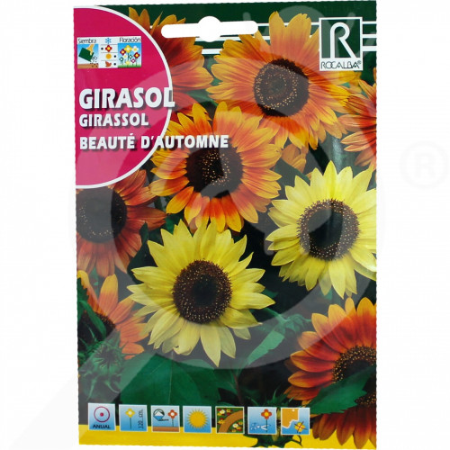 ro rocalba seed ornamental sunflower beaute d automne 10 g - 1, small