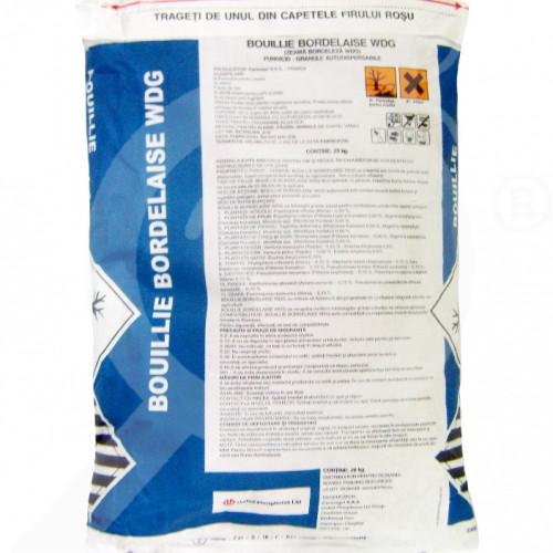 ro cerexagri fungicid zeama bordeleza wdg 20 kg - 1