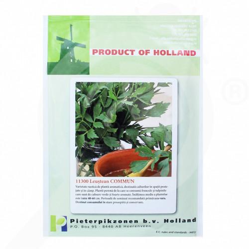 ro pieterpikzonen seminte commun lovage 10 g - 1