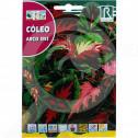 bg rocalba seed nettle arco iris 0 5 g - 0, small