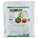 bg adama fungicid merpan 80 wdg 5 kg - 2, small