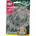 bg rocalba seed paniculata 4 g - 0, small