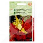 bg pieterpikzonen seed celosia plumosa 0 5 g - 1, small