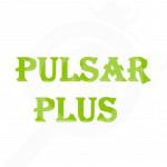bg basf herbicide pulsar plus 10 l - 0, small