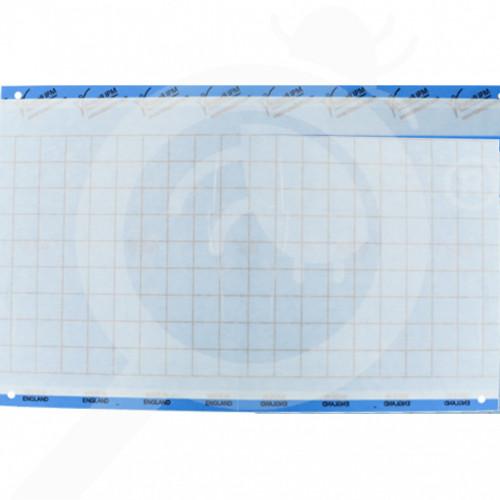 bg russell ipm adhesive trap impact blue 40 x 25 cm - 0, small
