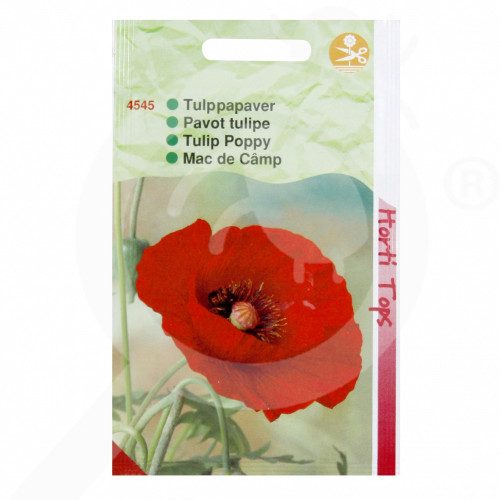 bg pieterpikzonen seed papaver glaucum 0 5 g - 1, small