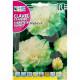 bg rocalba seed carnations gigante mejorado blanco 1 g - 0, small