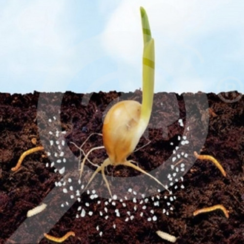 bg oxon insecticid agro trika expert 1 kg - 1